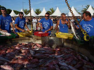 Le coin bleu pêcheurs remplissent 596