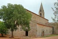 Abbaye-thoronet