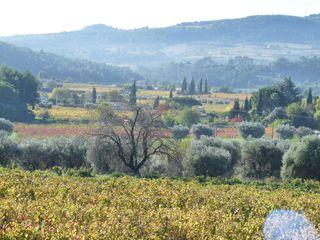 Le coin bleu campagne près de l'Olivette